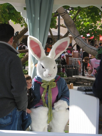 Murder Bunny