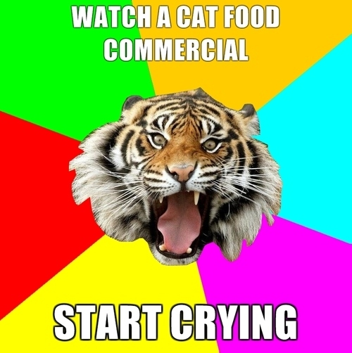 <img200*0:http://coltmonday.files.wordpress.com/2010/10/time-of-the-month-tiger-2.jpg>