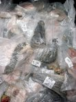 Assorted Dried Reptile Parts